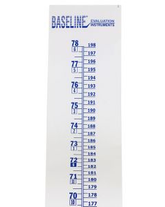 Baseline Wall Growth Chart - Close Up